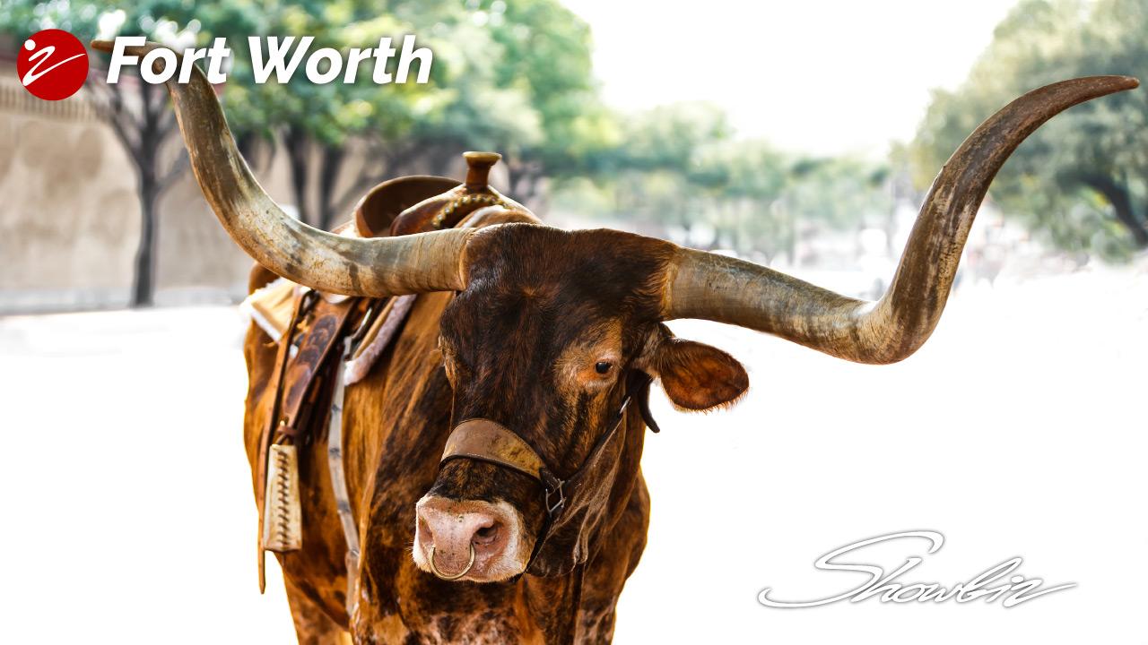 2019 Showbiz Fort Worth, TX